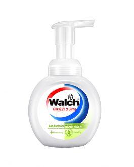 Walch Foaming Hand Wash 300ml – Moisturizing