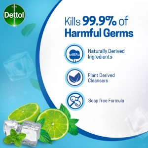 Dettol Hand Wash Cool 250ml